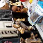 NZ Natural dog treats