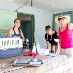 Setting up for vaccinations while on a housecall